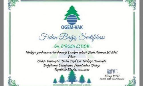 TYSD Çankırı Şubemizden Merhum Genel Başkanımız Adına 100 Adet Fidan