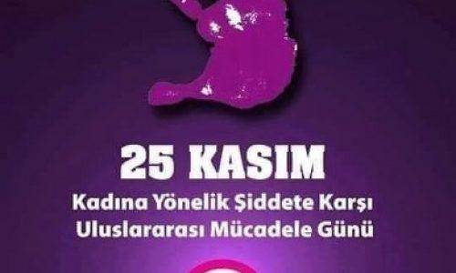 """TYSD Genel Merkez Ve 133 Şubemizin """"Kadına Şiddete Hayır"""" Mesajı"""