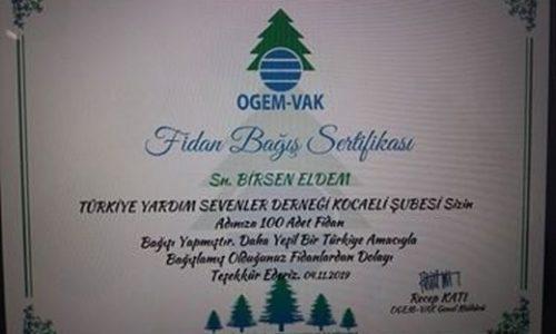TYSD Kocaeli Şubemizden Merhum Genel Başkanımız Adına 100 Adet Fidan