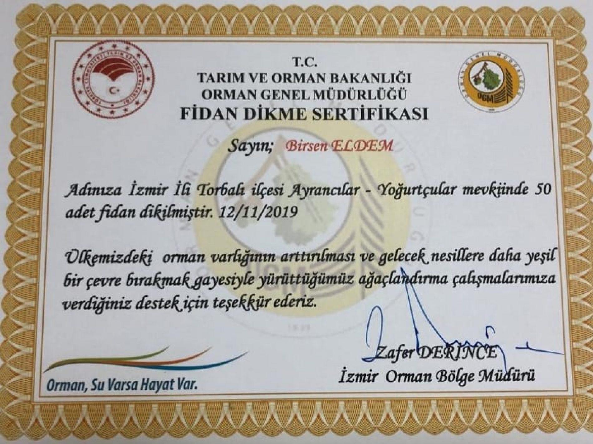 TYSD İzmir Şubemizden Fidan Dikimi