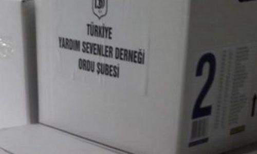 TYSD Ordu Şubemizin Gıda Yardımları